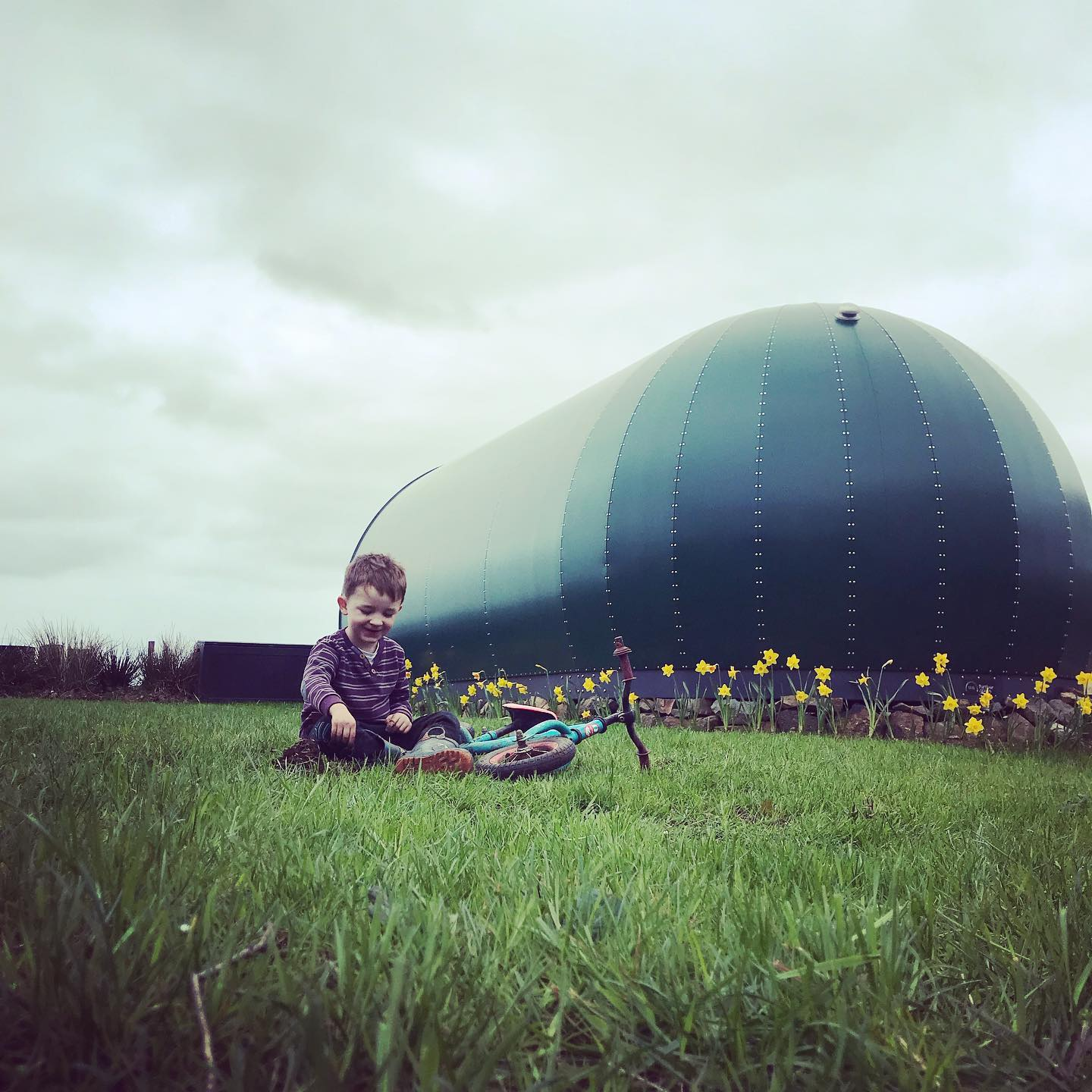 Ballycastle camping pods family friendly image