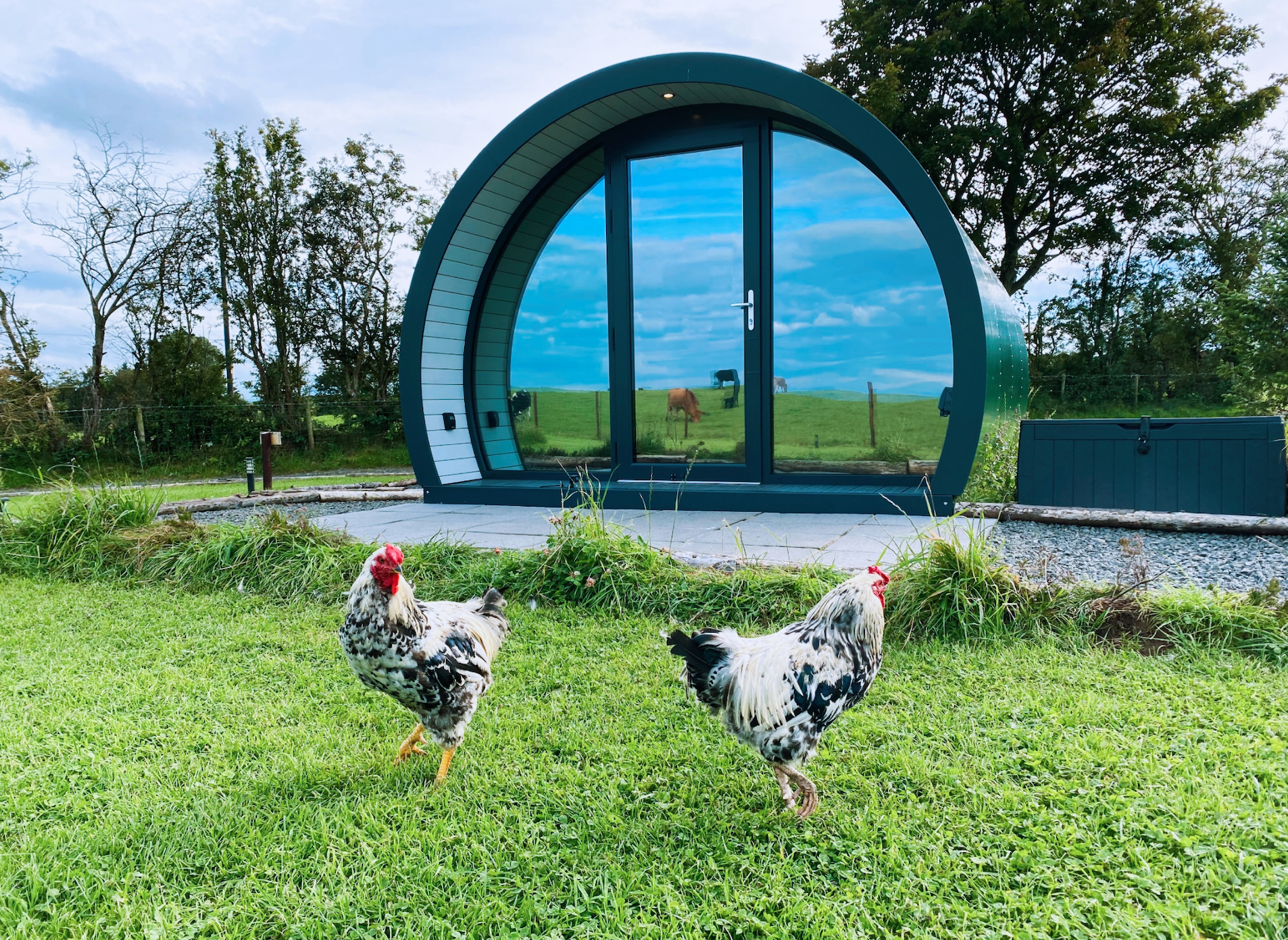 Farm glamping at Ballycastle camping pods