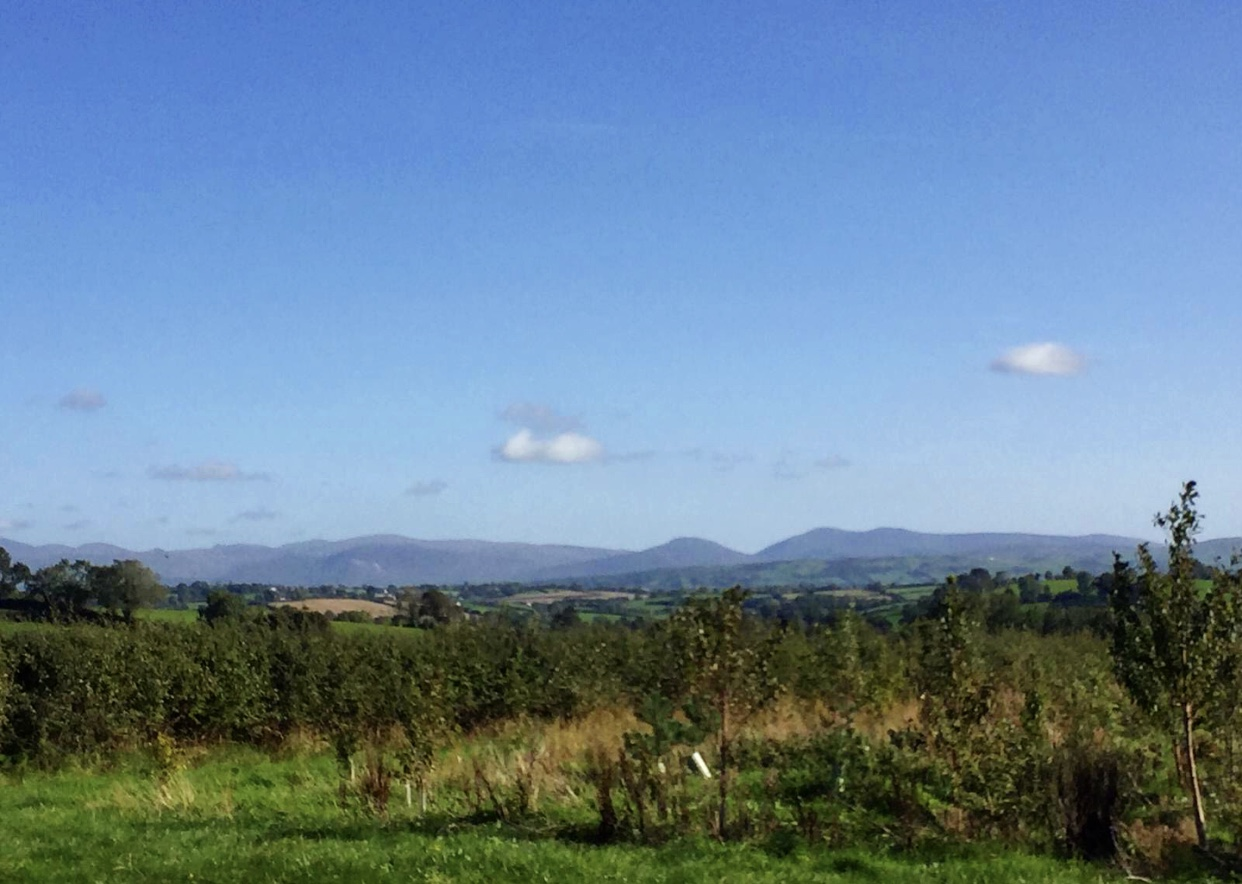 Mourne Mountains glamping view from Rathwood