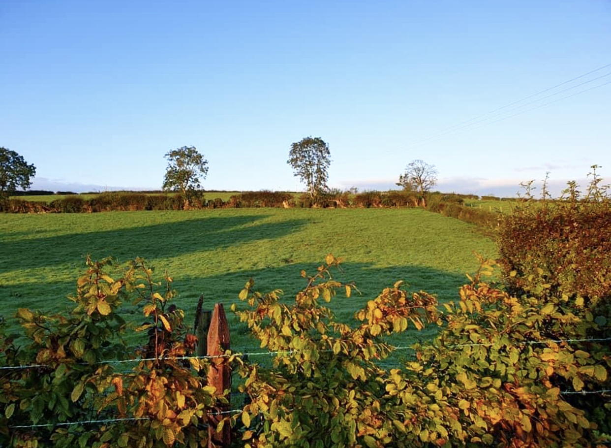 Glamping Co Down Landscape