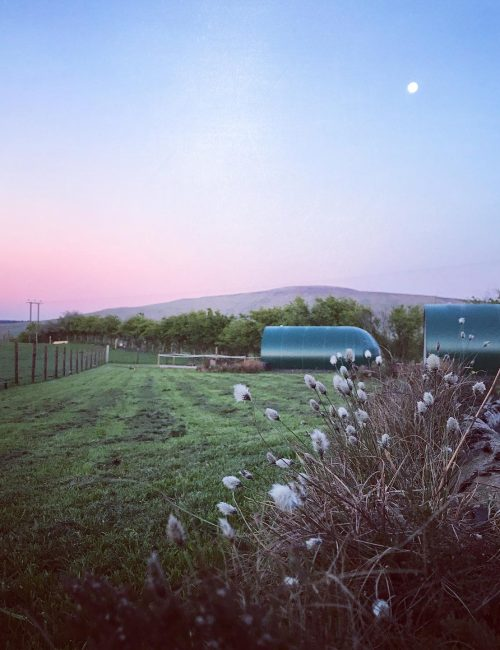 Black Knowe Ballycastle camping pods featured